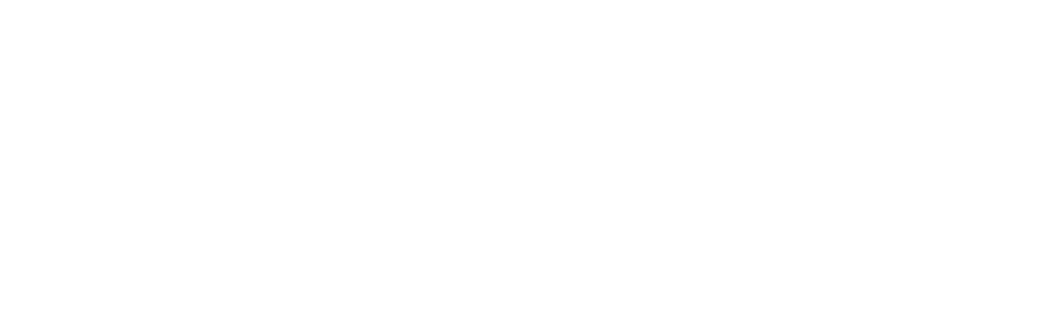 bpn Kunde Witt-Gruppe